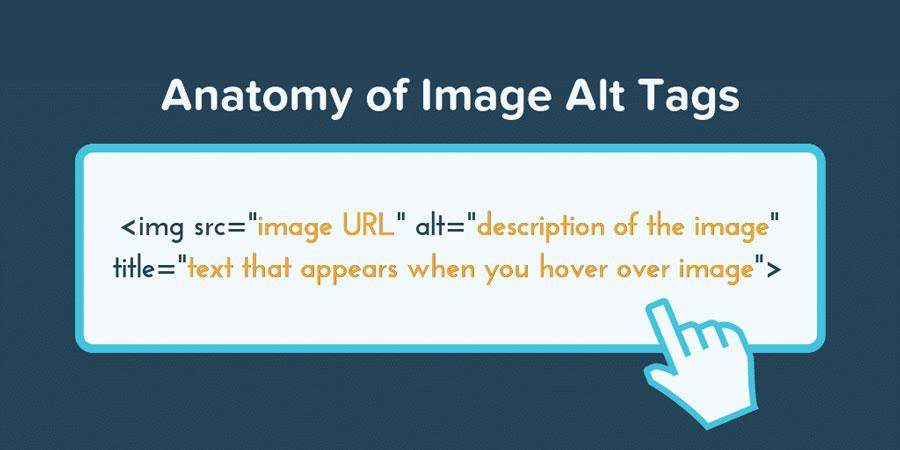 anatomia da imagem otimizada